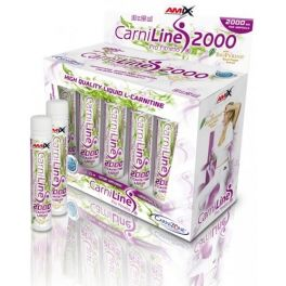 Amix CarniLine Pro Fitness 2000 10 ampollas x 25 ml